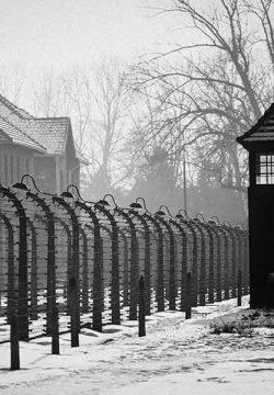 הנאצים החליטו לערוך מעין 'שעשועון'