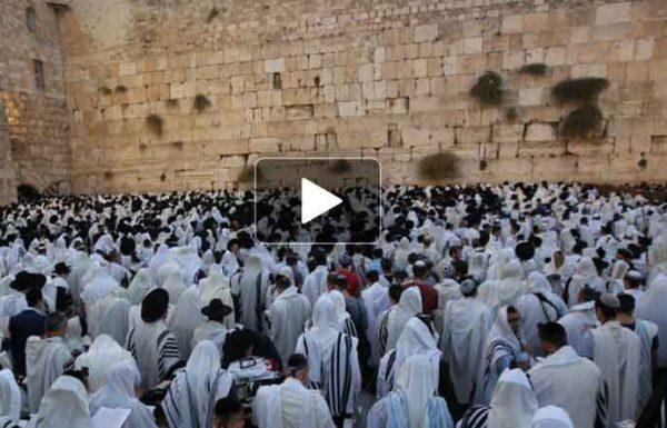 צפו: אלפים התכנסו למעמד אמירת סליחות ותפילה ברחבת הכותל המערבי, ערב שבת קודש פרשת ניצבים