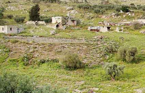 האם בארץ ישראל מותר ללמוד לבד ללא חברותא?