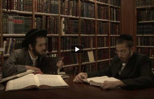כך כבשה מהדורת ה'משנה ברורה' של 'דרשו' את ארון הספרים היהודי ברחבי העולם