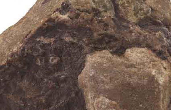 האם מותר לדבר לשון הרע על… אבן?