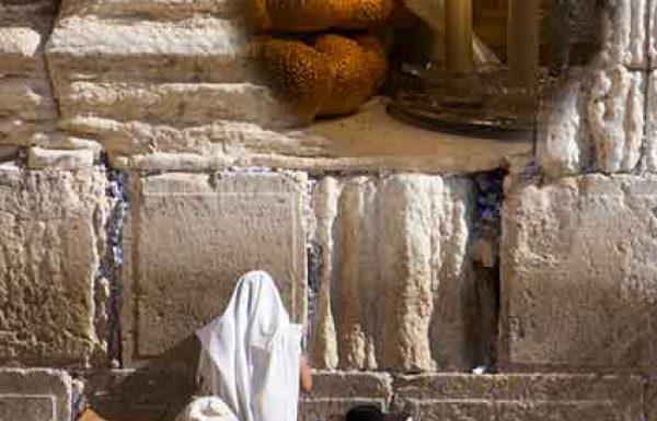 התפילות ב'שבת חזון' מעלות את התפילות של כל השנה…