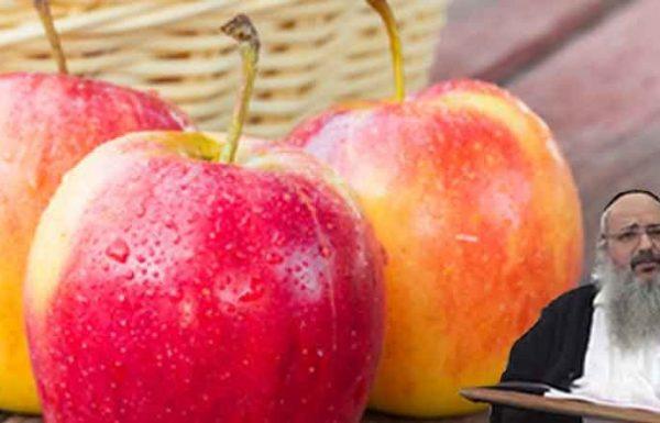 חזר מיד לשולחיו בהנהלת הביטוח הלאומי והודיע שהאיש שביקש את המלגה הוא אכן עני שבעניים, והראיה – שהוא נאלץ לחלק תפוח אחד לכל ילדיו…