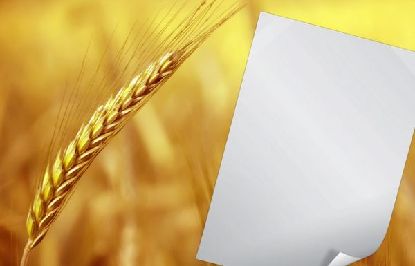 """הכותב מכתב בימי ספירת העומר ובראש המכתב כתב את יום הספירה, האם יצא יד""""ח ספירת העומר?"""
