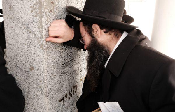 דברי הרבנים הגאונים על הזכות האדירה להצטרף למסע הקודש לראדין