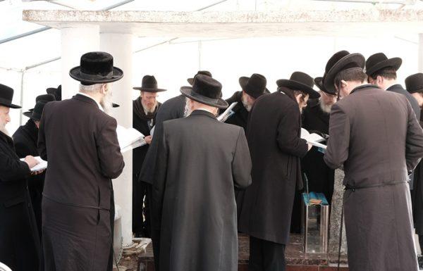 המוני בית ישראל בכל רחבי תבל יתאחדו ביום לימוד ותפילה עולמי